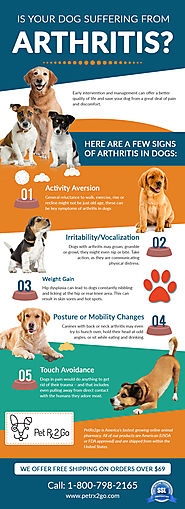 Effective Pain Management in Dogs