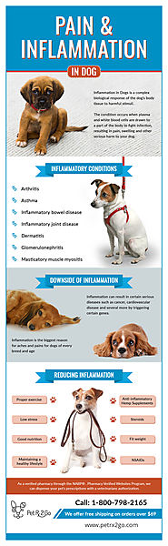 Steroid-free drug for dogs