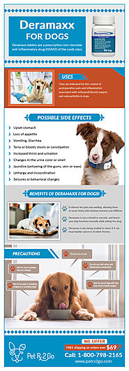 Deramaxx For Managing Discomfort In Your Dogs