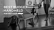 Best Cordless Vacuum for Pet Hair on a Budget- It's Cheaper than a Dyson