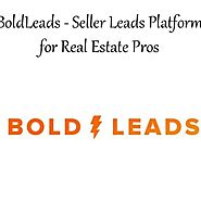 Bold Leads Glorias Experience Using The BoldLeads System