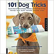 101 Dog Tricks: Step by Step Activities to Engage, Challenge, and Bond with Your Dog Paperback – April 1, 2007