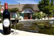 The Wine Route... need we say more?