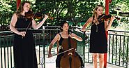 Wedding Musicians from Wollongong is Suitable for your Wedding