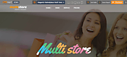 Multistore Theme for Magento 2