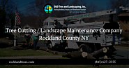 Tree Cutting Services | Landscape Maintenance Company
