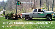 Tree Care Specialists in Rockland County NY