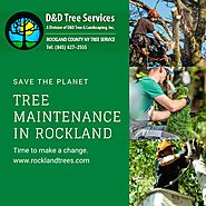 Landscape &Tree Maintenance In Rockland NY