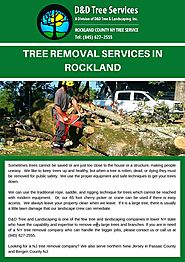 Tree Removal Services In Rockland by Calvin - Issuu