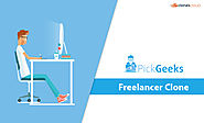 Check 7 Point Lists before You Buy a Freelancer Clone Script