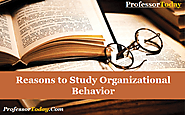 Reasons to Study Organizational Behavior | Professor Today