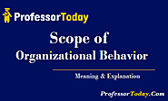 Scope of Organizational Behavior & Organizational Culture