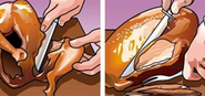 HowTo: Carve a Turkey the Infographic Way