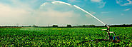 Commercial Agricultural Land Purchase Loans | American AG Finance
