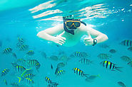 Best Non-Caribbean Cruise Destinations for Snorkeling and Diving