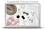 Styled Stock Library Subscription - Fempreneur Styled Stock