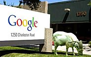 As part of their green initiative, Google regularly rents goats to mow the lawns of their mountain view HQ