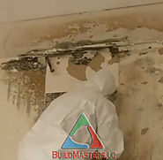 Ask Mold Specialist In Florida To Enable You Hygienic And Fresh Atmosphere