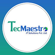 TecMaestro IT Solutions Client Reviews | Clutch.co