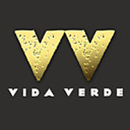 Vida Verde Mexican Restaurant – Best Mexican Dishes