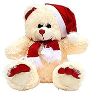 Website at http://www.onlinedelivery.in/christmas-day-teddy-india.aspx