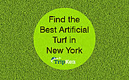 Find the Best Artificial Turf in New York at TripKen
