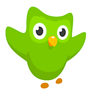 Duolingo: Learn English at home