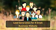 Lead Generation for A Small Business Website