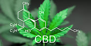 The Cannabidiol And The CBD oil | Liposomal CBD Oil