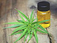 CBD Oil and its therapeutic applications