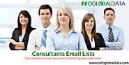 Consultants Email List