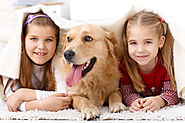 Caring for Pets Can Make Your Child a Better Person