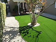 Synthetic Grass | Rain Forest LA
