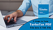 5 Steps to Turn TurboTax PDF File into A TAX File