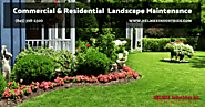 Commercial & Residential Landscape Maintenance Services