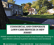 Commercial and Corporate Lawn Care Services In New Jersey