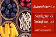 Nutrigenetics Nutrigenomics