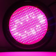 Lvjing 3rd Generation 300W UFO Led Grow Light Panel Full Spectrum, 277LED, with UV / IR, for Indoor Plants Garden Gre...