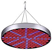 50W LED Plant Grow Lights , Shengsite UFO 250 LEDs Indoor Plants Growing Light Bulbs with Red Blue Spectrum Hydroponi...
