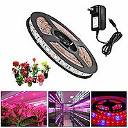 Topled Light LED Plant Grow Strip Light with Power Adapter,Full Spectrum SMD 5050 Red Blue 4:1 Rope Light for Aquariu...