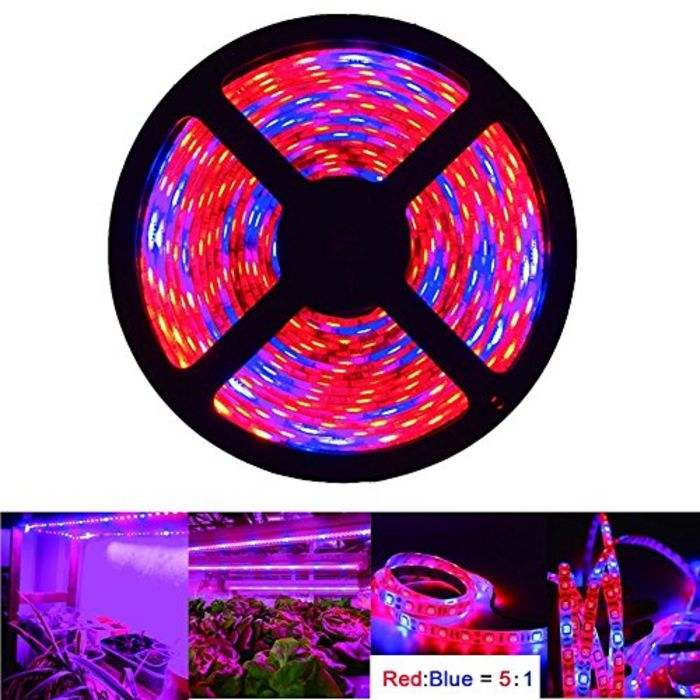 Top 10 Best Led Rope Grow Lights A Listly List