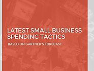How small businesses spend on software & tools? - Statistics & predic…