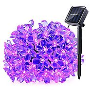 Qedertek Solar Christmas String Lights, 21ft 50 LED Fairy Blossom Flower Christmas Decorative Lighting for Outdoor, H...
