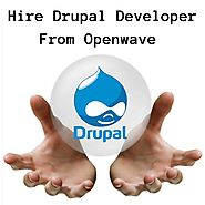 Drupal Website Developer
