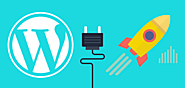 Wordpress CMS Website Development