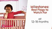 Milestones: Red Flags to Watch For at 12 to 18 Months | Parents