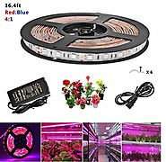 Topled Light® LED Plant Grow Strip Light with Power Adapter,Full Spectrum SMD 5050 Red Blue 4:1 Rope Light for Aquari...