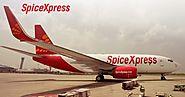 Spicejet's dedicated cargo service to boost shrimp business | Aviation