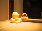 Adorable Rubber Ducky Shower Curtains - Cute Ideas!