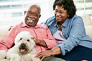 6 Ways to Keep Elderly Family Members Safe When Around Pets